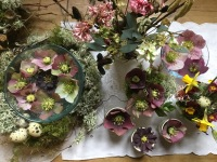 Collection of spring posies